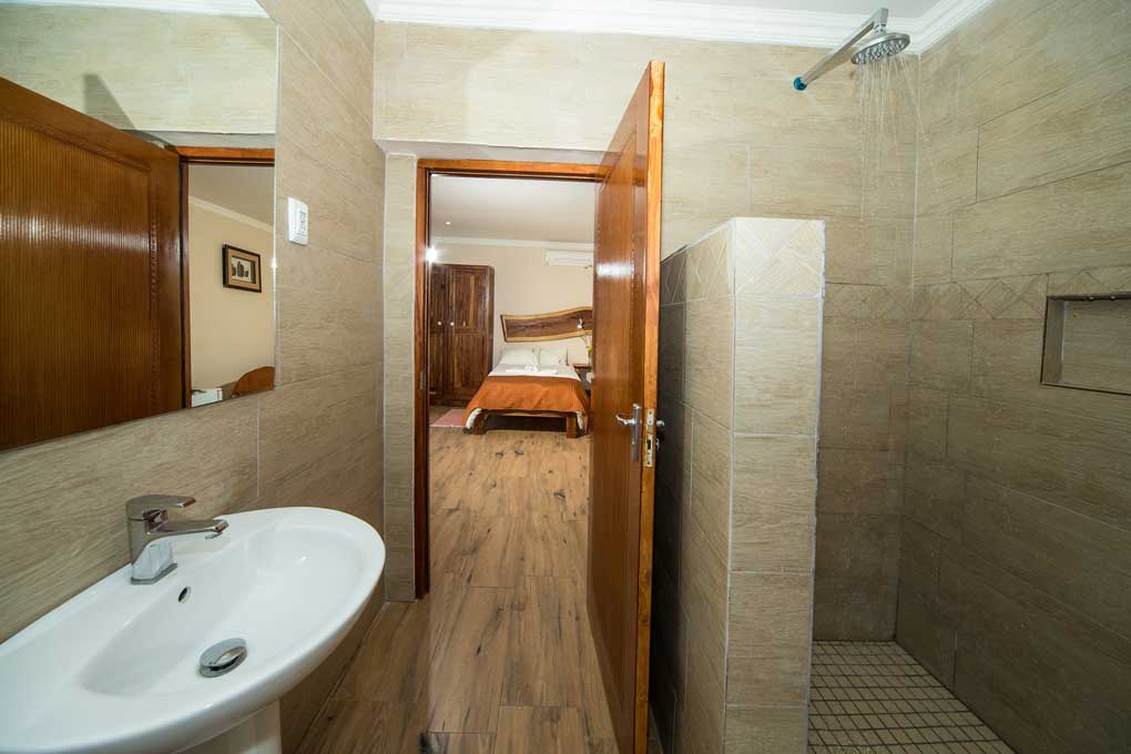 Standard Double Room Shower